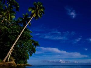 8-tropical-seaside