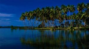 9-sek-lagoon