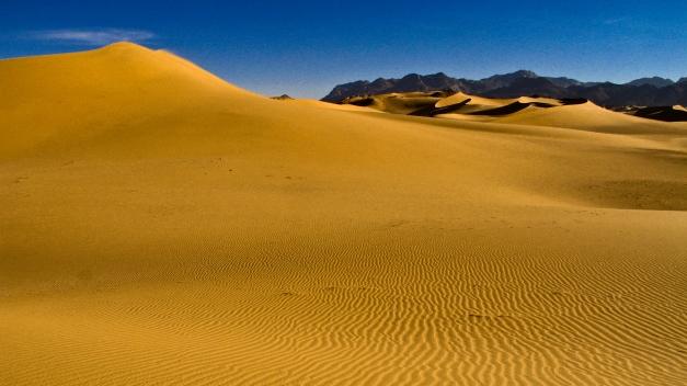 105-gilded-sand