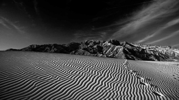 mesquite-crossing-noir