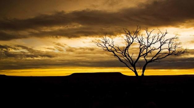 the-dusk