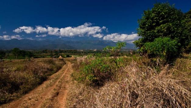 pai-countryside1