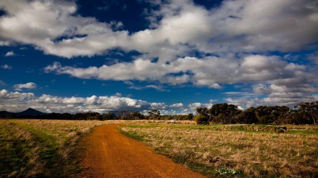 #Country Lane