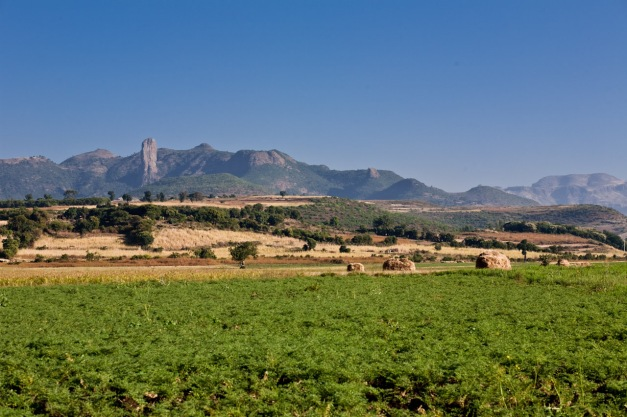Bahir Dar Landscape
