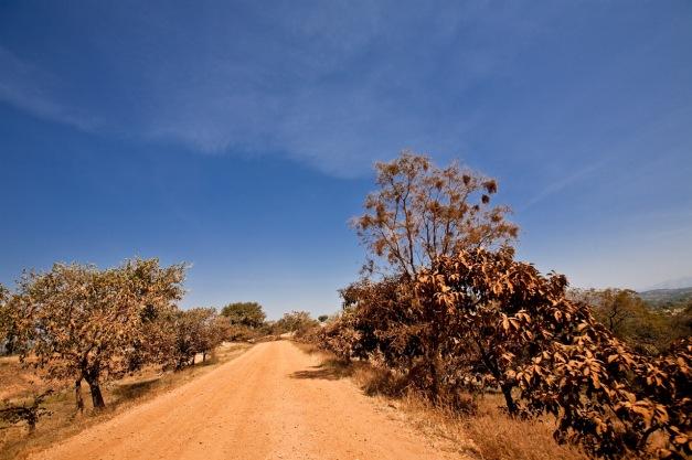 Mandura Road